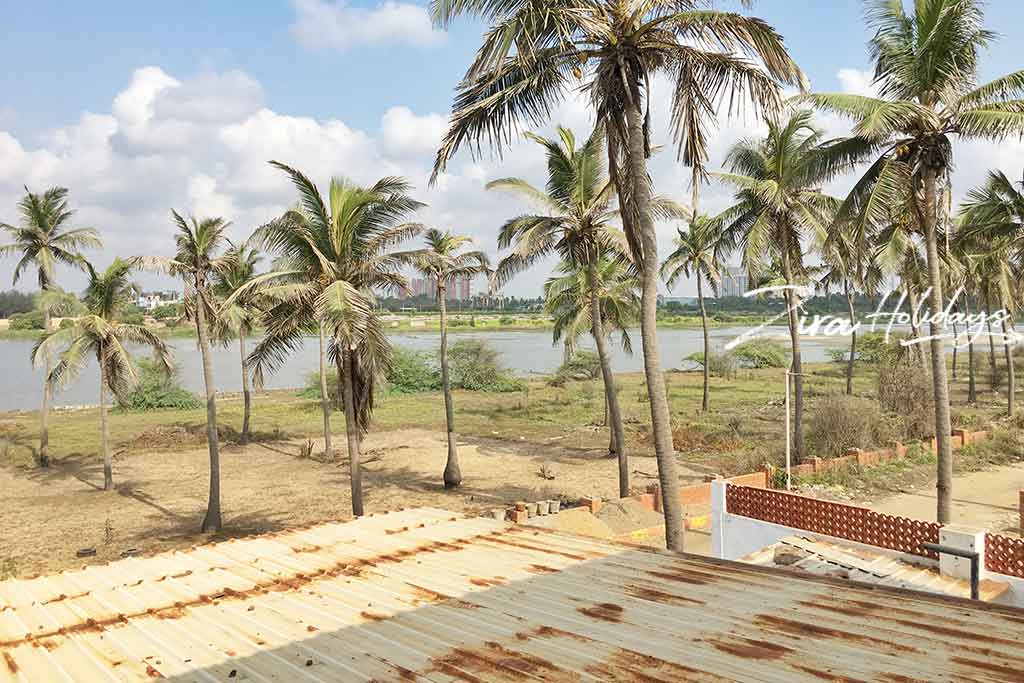 island beach house for rent in ecr