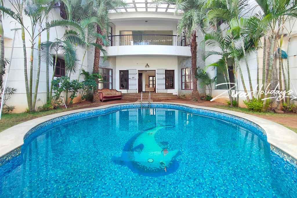 dolphincity beach house ecr
