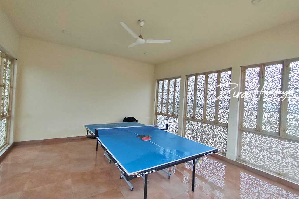 springfield beach house for hire in ecr